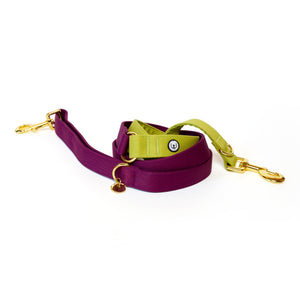 Plum-Pickle Convertible Leash