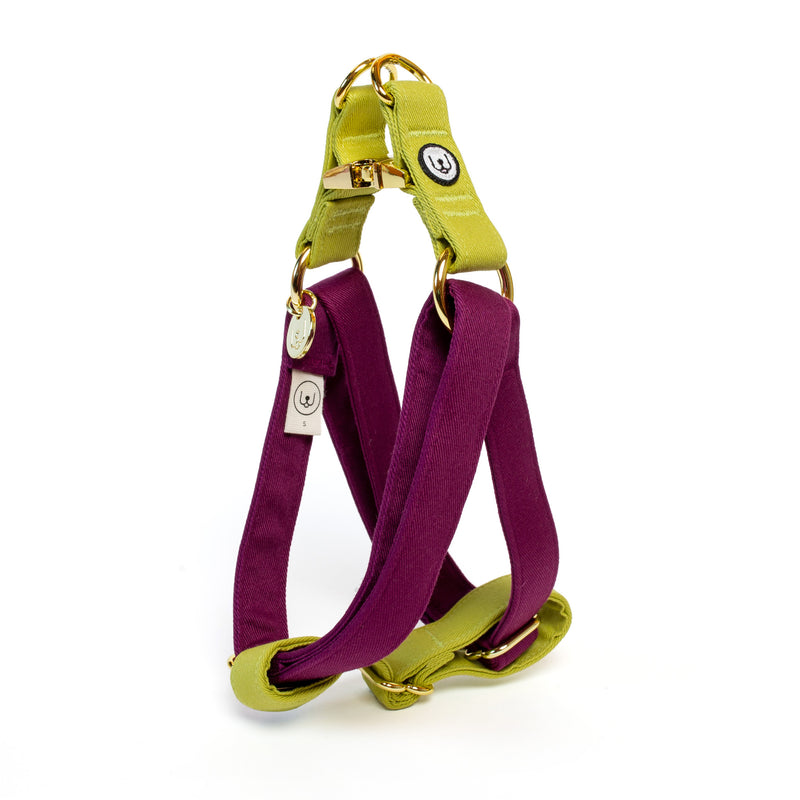 Plum-Pickle Step-In Harness Set