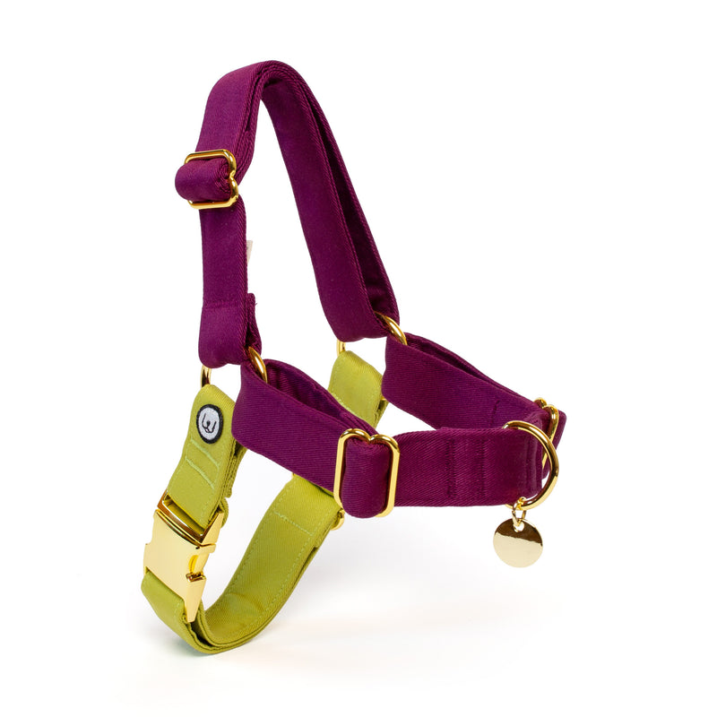 Plum-Pickle No-Pull Harness Set