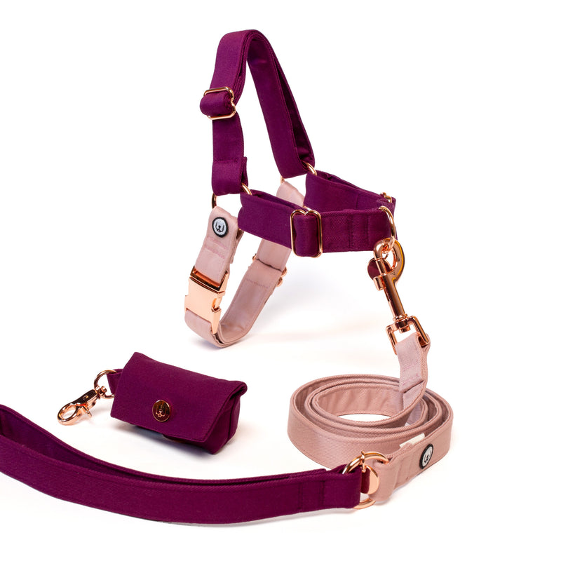 Plum-Rose No-Pull Harness Set