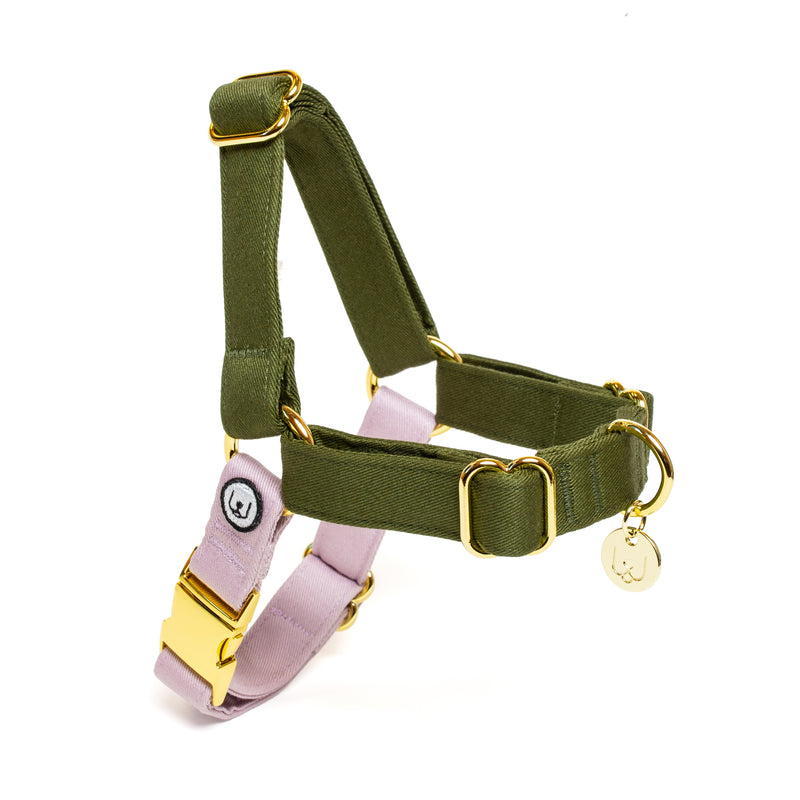 Olive-Lilac No-Pull Harness