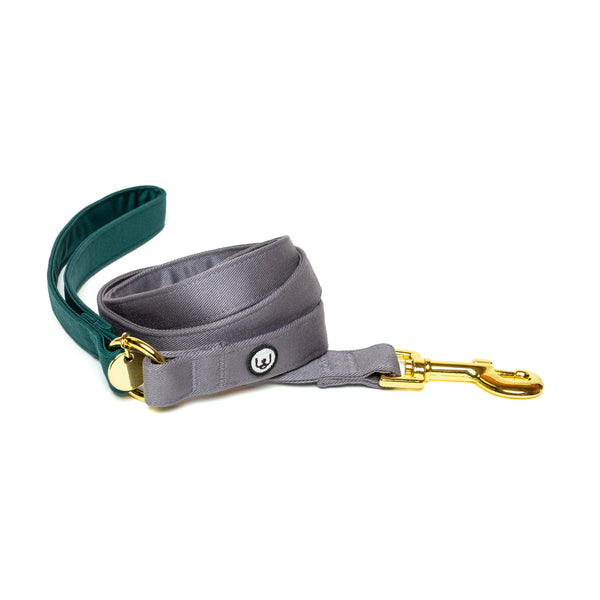 Spruce-Gray Leash