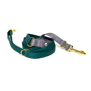 Spruce-Gray Convertible Leash