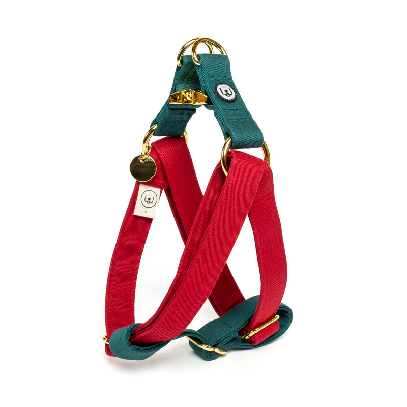 Poinsettia Step-In Harness Set