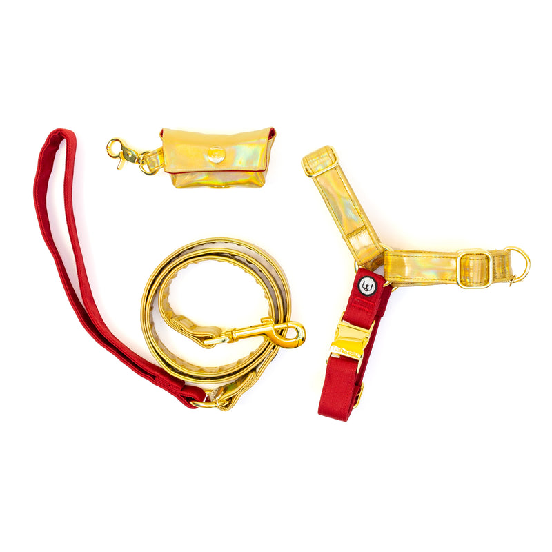 Holly Jolly No-Pull Harness Set