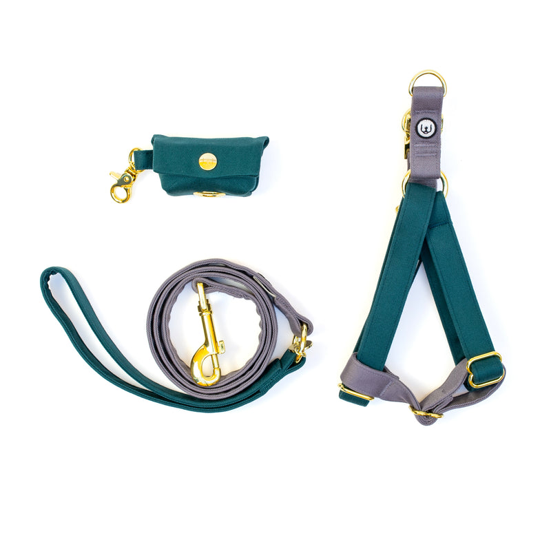 Spruce-Gray Step-In Harness Set