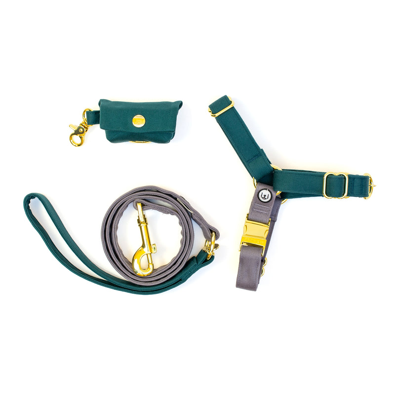 Spruce-Gray No-Pull Harness Set