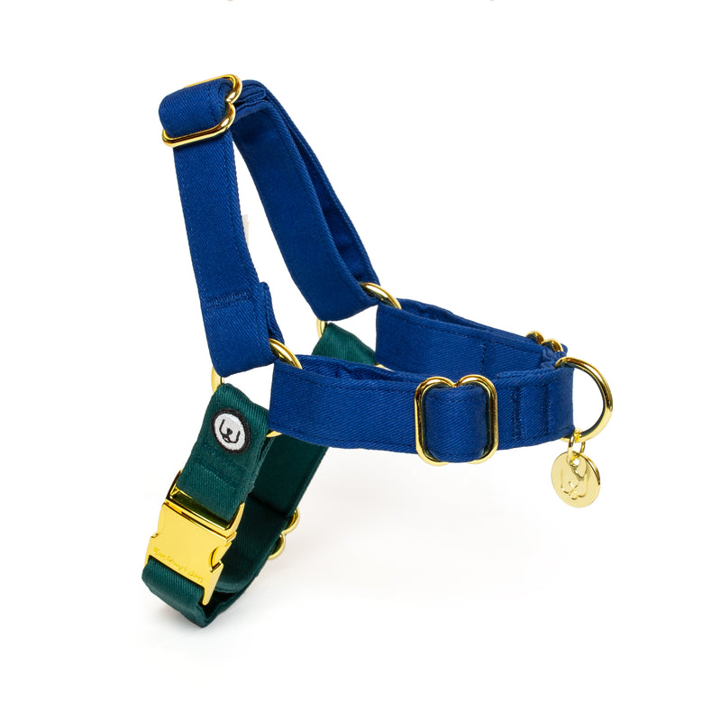 Blue-Spruce No-Pull Harness Set
