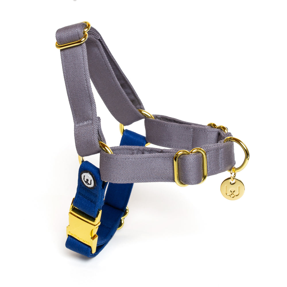 Gray-Blue No-Pull Harness Set