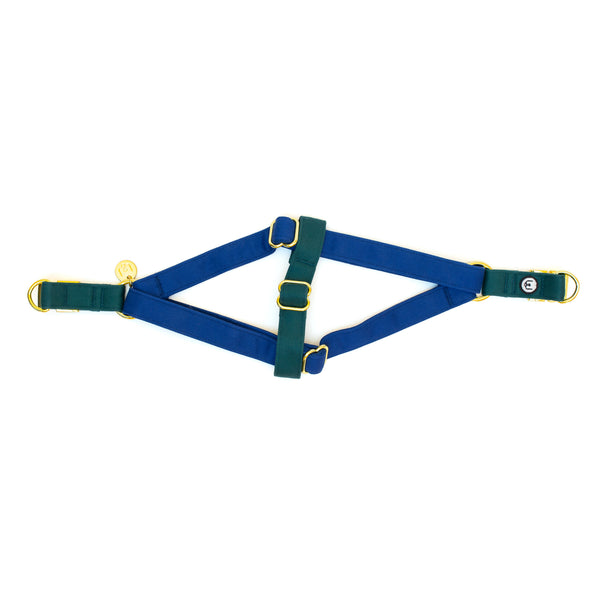 Blue-Spruce Step-In Harness