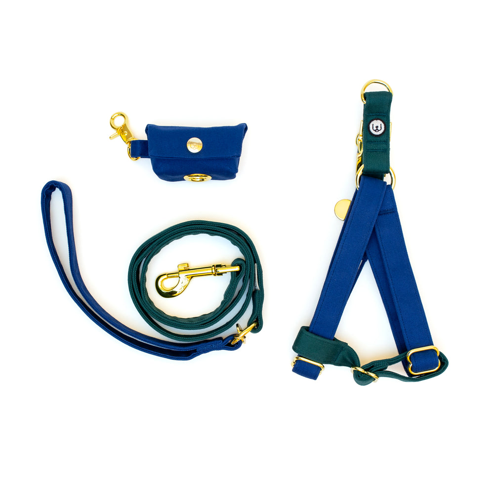 Blue-Spruce Step-In Harness Set