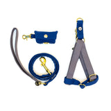 Gray-Blue Step-In Harness Set