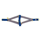 Gray-Blue Step-In Harness