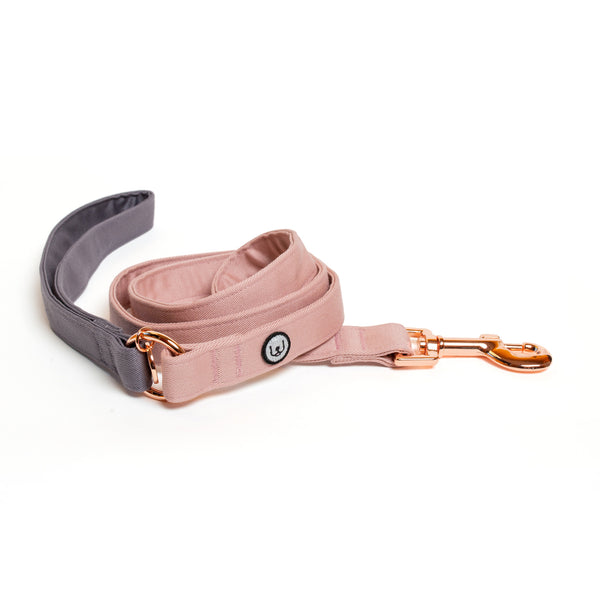 Gray-Rose Leash