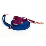Blue-Plum Convertible Leash