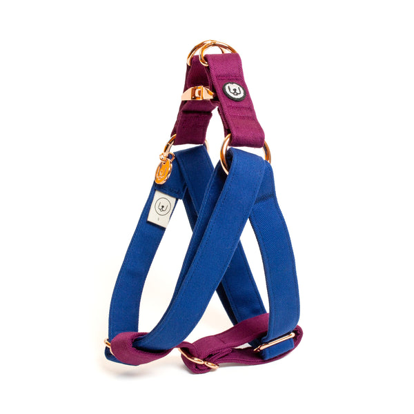 Blue-Plum Step-In Harness