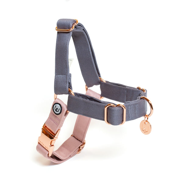 Gray-Rose No-Pull Harness Set