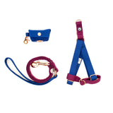 Blue-Plum Step-In Harness Set