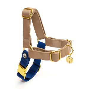Fawn-Blue No-Pull Harness Set