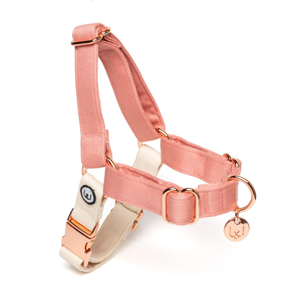 Blossom-Ivory No-Pull Harness