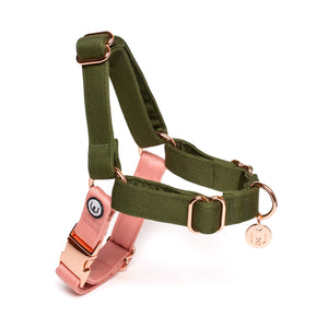 Olive-Blossom No-Pull Harness