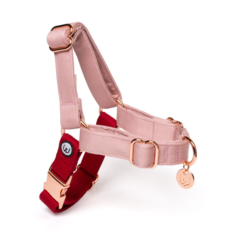 Rose-Ruby No-Pull Harness