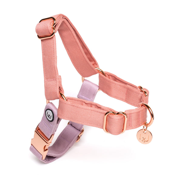 Blossom-Lilac No-Pull Harness
