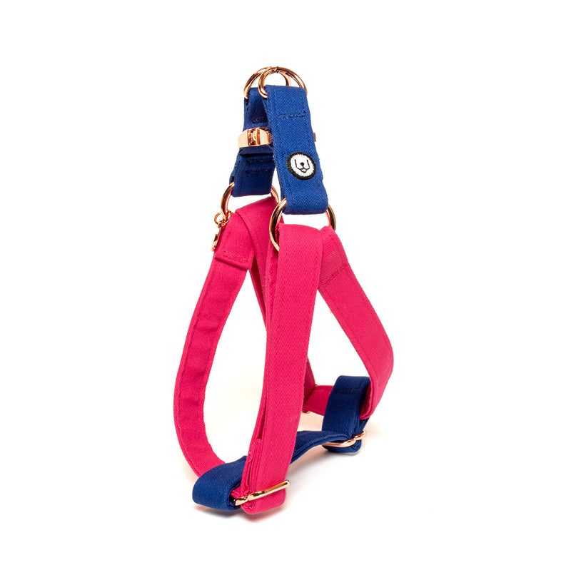 Magenta-Blue Step-In Harness