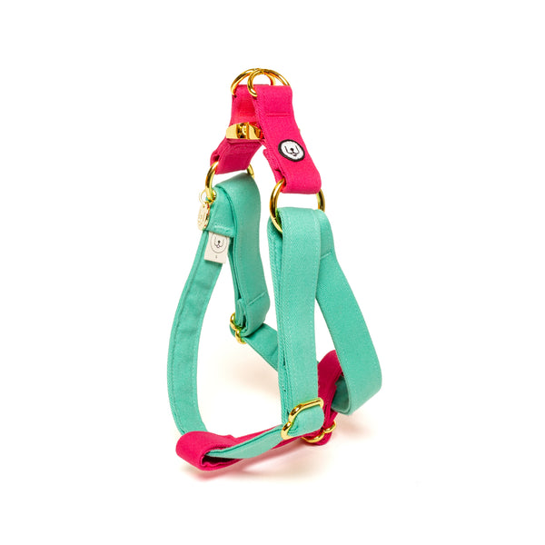Seafoam-Magenta Step-In Harness