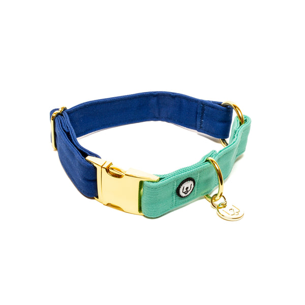 Blue-Seafoam Collar