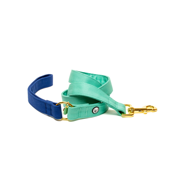 Blue-Seafoam Leash