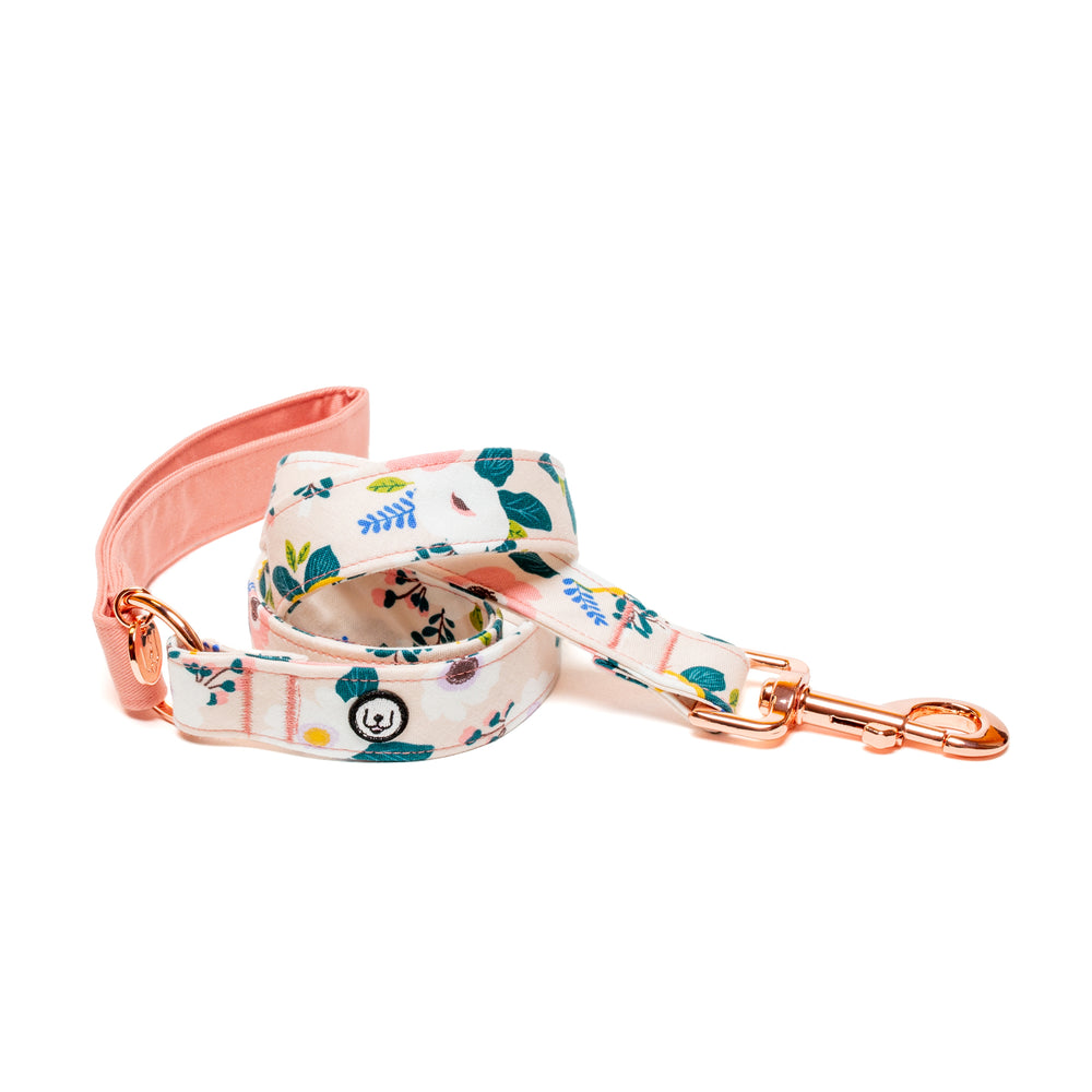 Anemone Dream Standard Leash