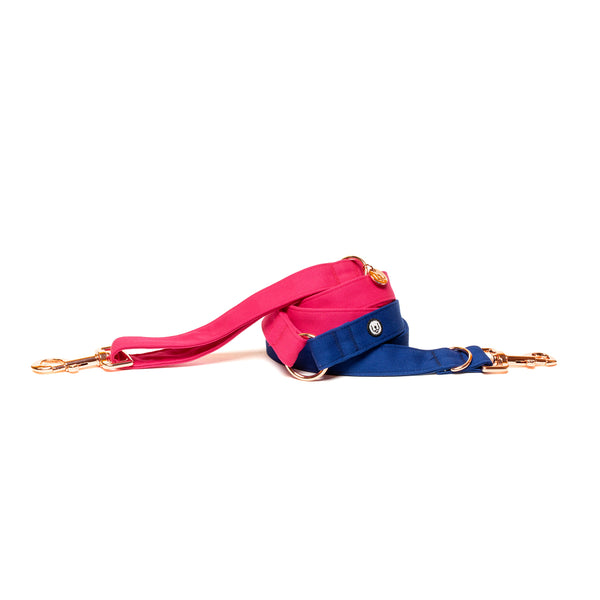Magenta-Blue Convertible Leash