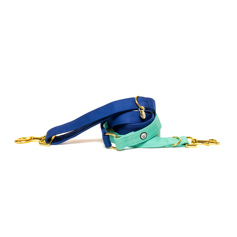 Blue-Seafoam Convertible Leash