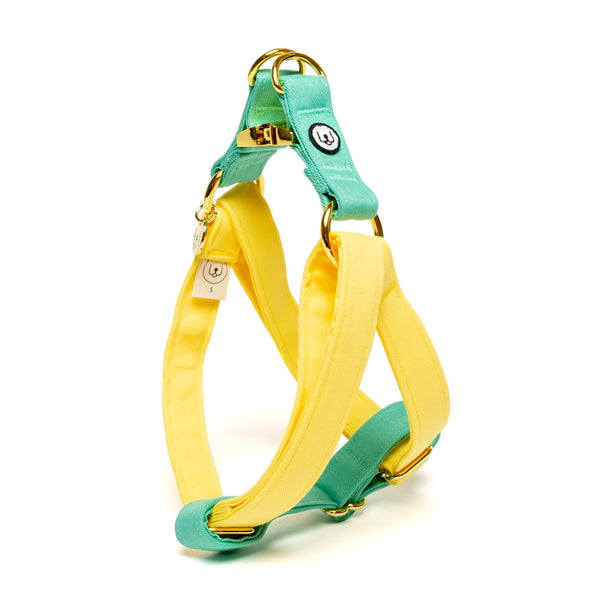 Lemon-Seafoam Step-In Harness
