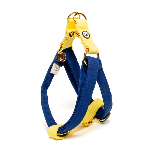 Blue-Lemon Step-In Harness