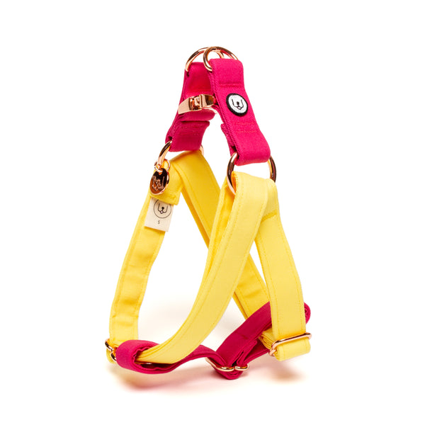Lemon-Magenta Step-In Harness