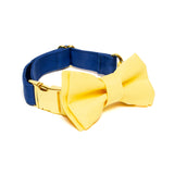 Blue-Lemon Collar