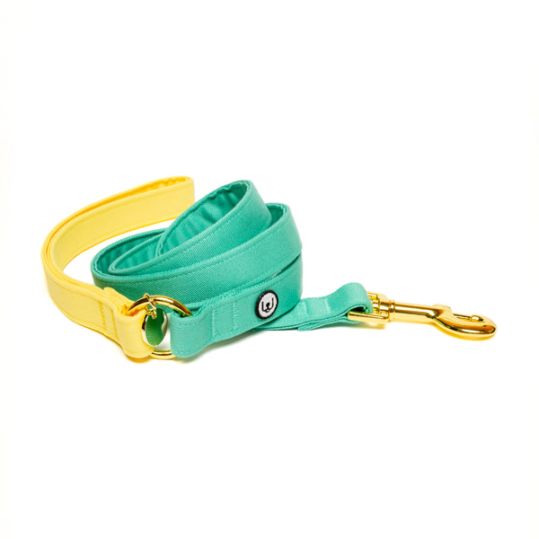 Lemon-Seafoam Leash