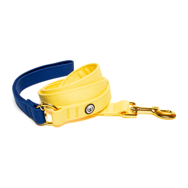 Blue-Lemon Leash