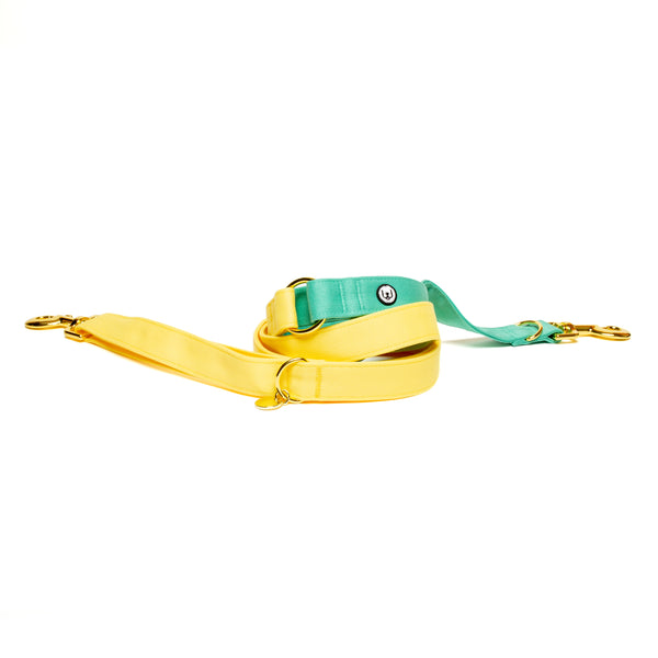 Lemon-Seafoam Convertible Leash