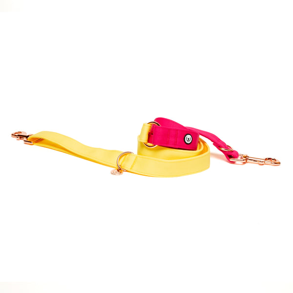 Lemon-Magenta Convertible Leash