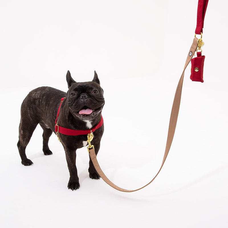 Ruby-Fawn No-Pull Harness Set