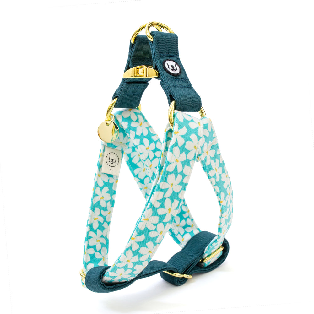 Blooming Days Step-In Harness Set - Mint