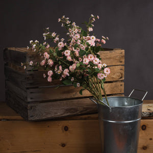 The Recipe Collection Pink Wild Meadow Rose