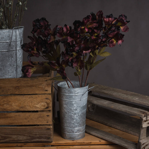 The Recipe Collection Chocolate Alstroemeria Lily Spray