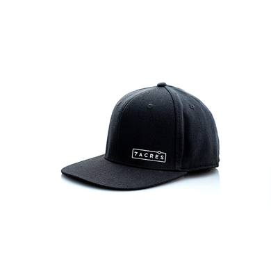 Box Logo Snap Back