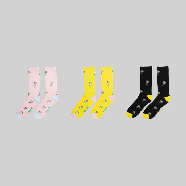 Daisy Sock Bundle