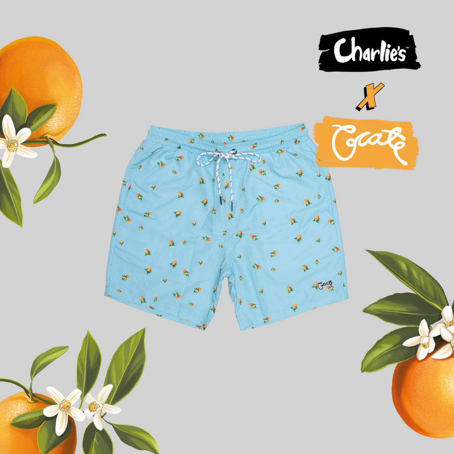 Mens Oranges Swim Shorts (Not Limited)