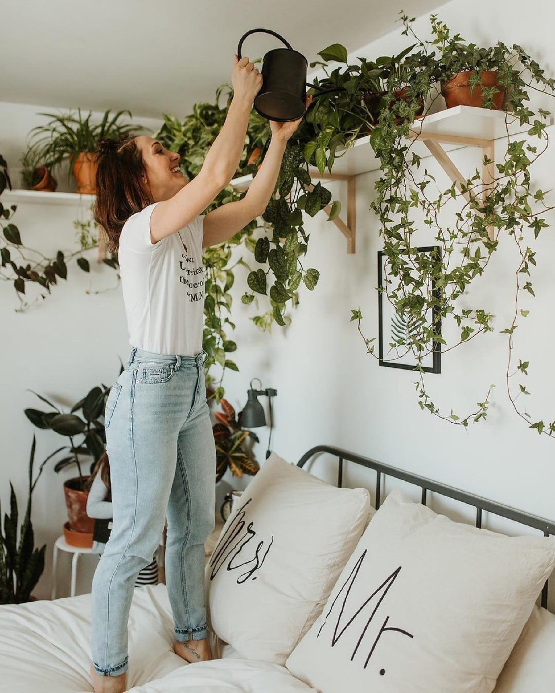 green plants for indoors